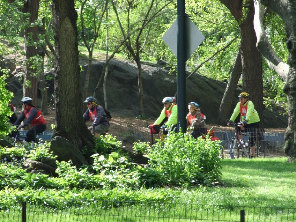 Bicycle Tour in Central Park