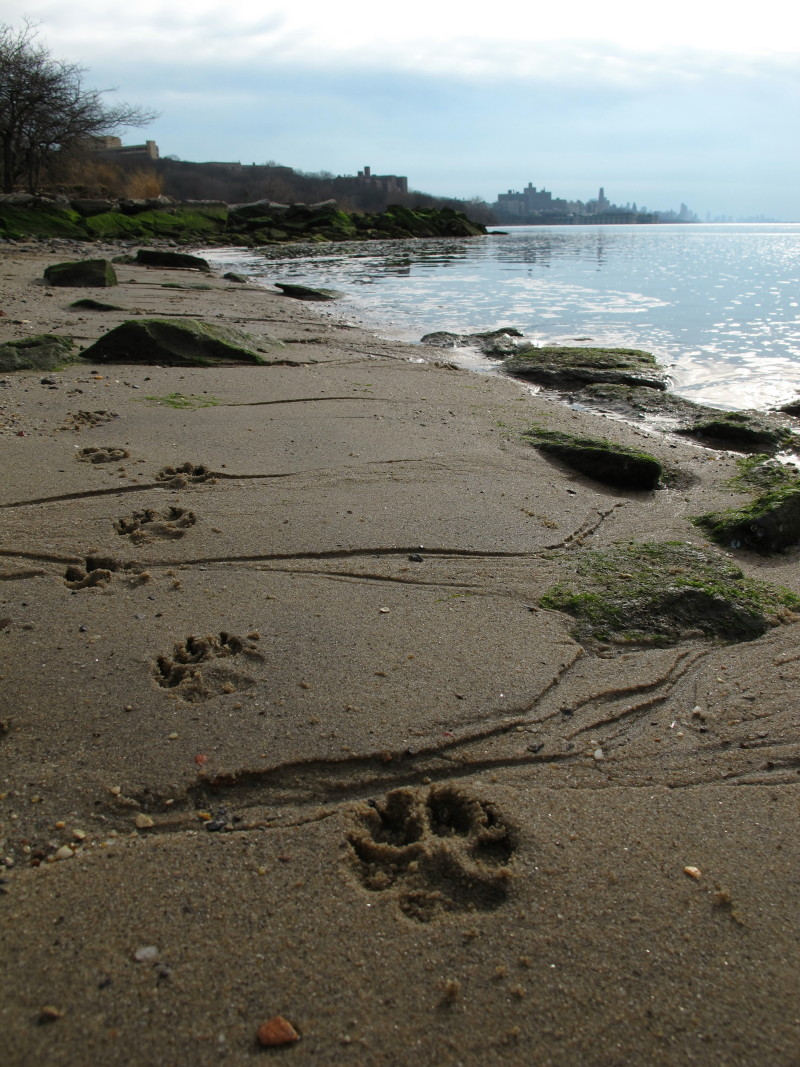 Hudson River Beach NY